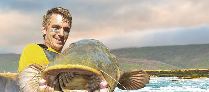 Stefan Seuss, test angler at Black Cat, is committed to sheatfish angling